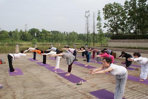 清晨瑜伽帮你疏通全身经络  瑜伽动作