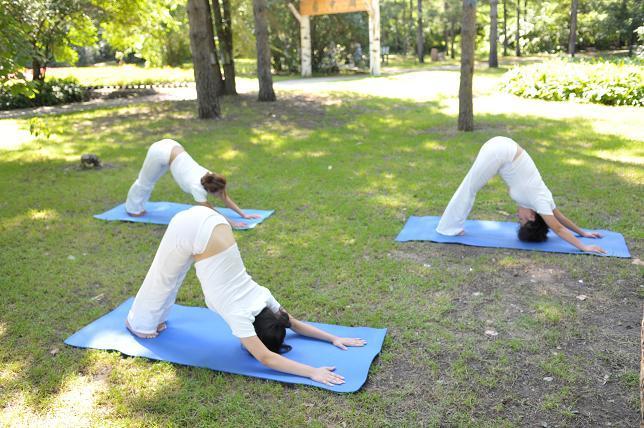 为什么瑜伽越练体态越差 瑜伽练习