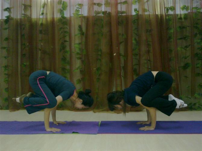 预防腰间盘突出的瑜伽理疗序列 瑜伽基本功