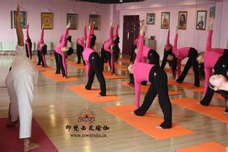 瘦肚子的瑜伽动作 瑜伽动作分享