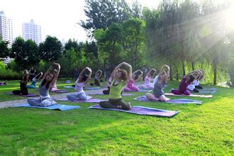 瑜伽练习让你拥有马甲线   瑜伽动作