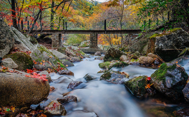 关于写秋景的精彩作文