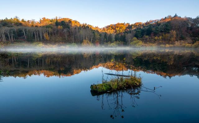 写秋天景物的满分作文