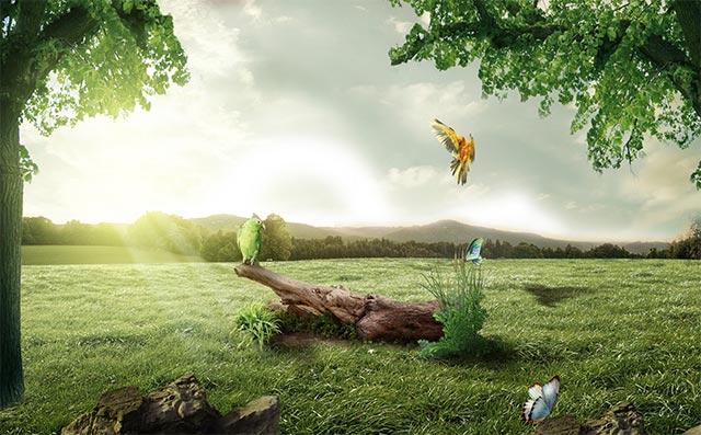小学生爱护环境保护地球演讲稿