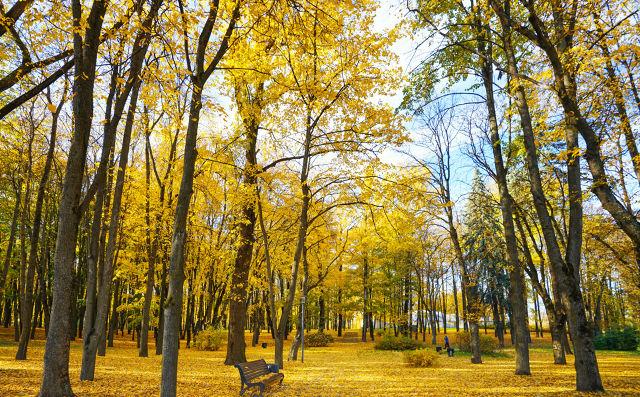 写秋天景点的作文