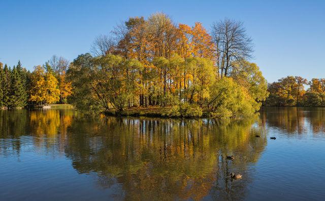 关于秋天的美景作文