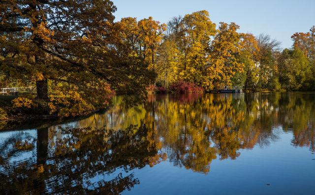 寻找秋天的精彩作文